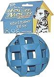 Pet Supplies : Pet Toy Balls : JW Pet Company Hol-ee