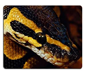 Animals Snakes Python Reptiles Closeup Mouse Pads Customized Made to Order Support Ready 9 7/8 Inch (250mm) X 7 7/8 Inch (200mm) X 1/16 Inch (2mm) High Quality Eco Friendly Cloth with Neoprene Rubber MSD Mouse Pad Desktop Mousepad Laptop Mousepads Comfortable Computer Mouse Mat Cute Gaming Mouse pad