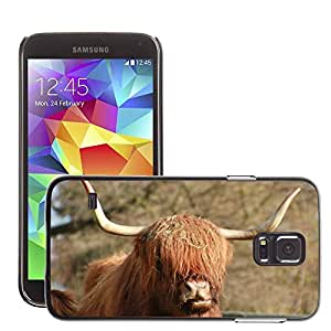 Etui Housse Coque de Protection Cover Rigide pour // M00115607 Scottish Highland Beef Animal Marrón // Samsung Galaxy S5 S V SV i9600 (Not Fits S5 ACTIVE)
