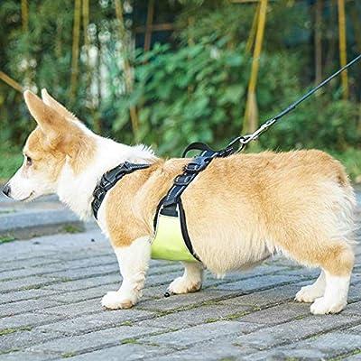 KDKDA Malla Suave Arnés para Perros Mascotas Oxford Tela ...