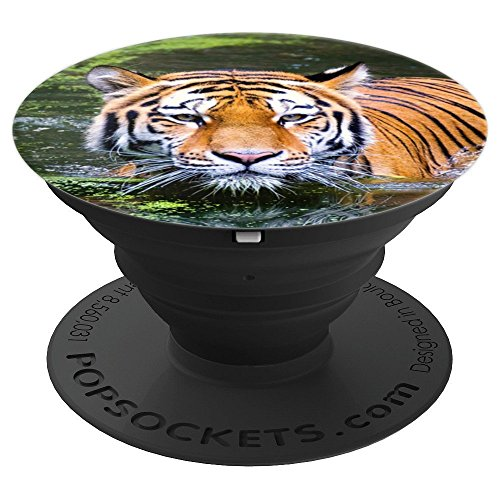 Tiger Print Paw Stripes Fierce Jungle Wildlife -