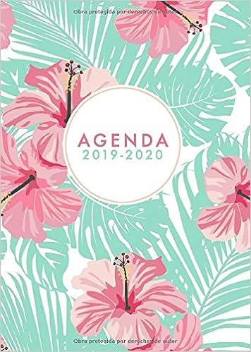 Agenda 2019-2020: Agenda 2019 2020 Semana Vista 18 meses -1 ...