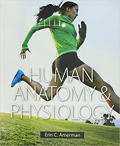 Amazon.com: Human Anatomy & Physiology and Modified Mastering A&P ...
