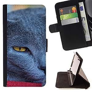 Momo Phone Case / Flip Funda de Cuero Case Cover - Siberia Azul Británico de Pelo Corto Korat; - LG G4