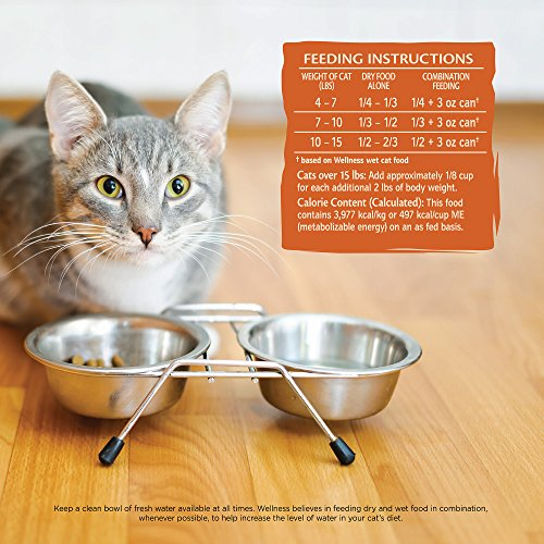 Wellness Core Dry Cat Food, Original Turkey & Chicken Recipe