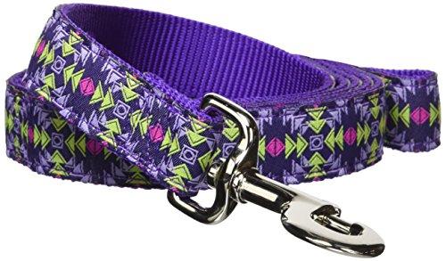 Single Navajo - Hamilton Single Thick Dog Leash with Navajo Patterned Ribbon Overlay, 1