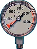 Trident Submersible Pressure Gauge