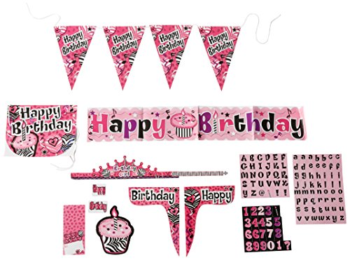 Forum Novelties Pink Zebra Birthday Cubicle Decorating Kit