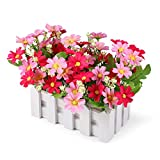 Louis Garden Artificial Flowers Fake Daisy in Picket Fence Pot Pack - Mini Potted Plant (Daisy-Pink)