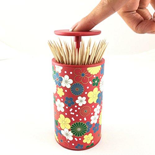 Toothpick Dispenser Holder Stylish Designer Modern