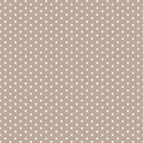 Baumwollstoff Mini Sterne Grau Webware Meterware Popeline OEKOTEX 150cm breit Ab 0,5 Meter