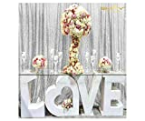 ShiDianYi Glitter Backdrop Photo Backdrop Sequins -8FTx9FT-SEQUIN-CURTAIN-BACKDROP-Shimmer Curtains for Backdrop (8FTx9FT, Silver)