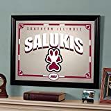The Memory Company NCAA Southern Illinois University, Carbondale Official Mirror, Multicolor, 23 x 18