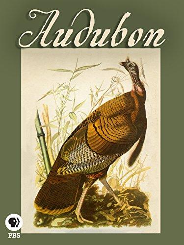 (Audubon)