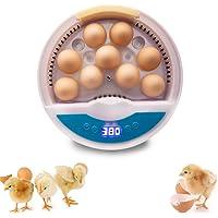 KKTECT Incubadora de 9 Huevos Pequeñas incubadoras