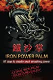 img - for Iron Power Palm: 97 days to skull smashing power book / textbook / text book