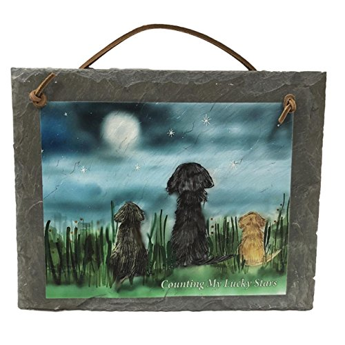 United Slates of America Counting My Lucky Stars American Made Natural Slate Dog Welcome Sign