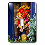 3dRose Danita Delimont - Flowers - Greece, Crete, Chania, Window in Chania - Light Switch Covers - single toggle switch (lsp_277430_1)