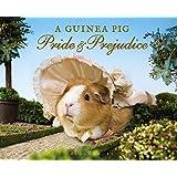 A Guinea Pig Pride & Prejudice