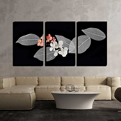 wall26 - 3 Piece Canvas Wall Art - Lace Leaves on Black Background - Modern Home Decor Stretched and Framed Ready to Hang - 16