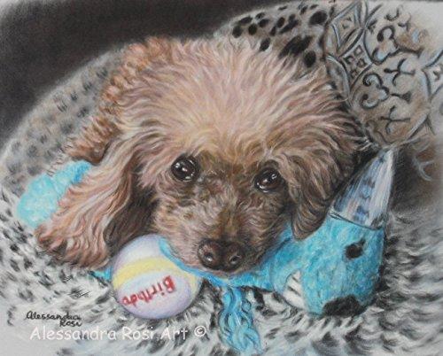 custom-dog-portrait-from-photo-pastel-portrait-commission-by-professional-pet-portrait-artist