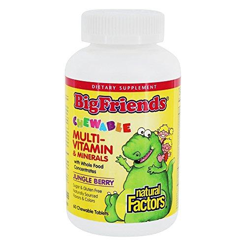 Big Friends Multi-Vitamin & Minerals Chewable Jungle Berry Natural Factors 60 Tabs