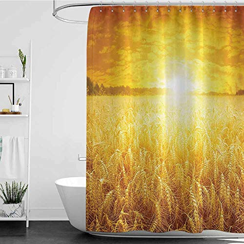 shower curtains golden retriever Farm House Decor Collection,Bright Sunset over Wheat Field Countryside Scenery in Summertime Idyllic Rural Landscape,Golden W48