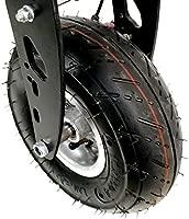 Micro Patinete Eléctrico Zipper 800W con Suspensión: Amazon ...
