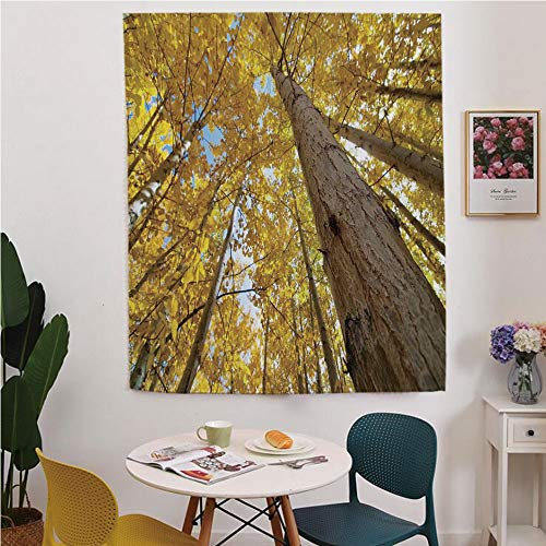 Forest Home Decor Blackout Window curtain,Free Punching Magic Stickers Curtain,Up View of Fall Aspen Tree Leaves in Fade Tone Autumn Season Photo Image,for Living Room,study, kitchen, dormitory, Hotel