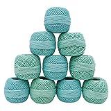 Mercerized Cotton 10 Pcs Crochet Yarn Tatting Thread Skeins Embroidery Knitting