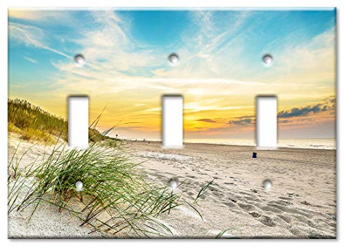 Art Plates 3 Gang Toggle Wall Plate - Grass and the Beach Sand