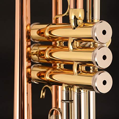 Kaizer C-Series (4000) Intermediate Trumpet B Flat Bb New