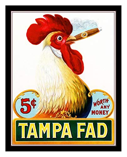 (Iron Ons 8 x 10 Photo Tampa Fad Cigars 5 Cents Vintage Old Advertising Campaign Ads)