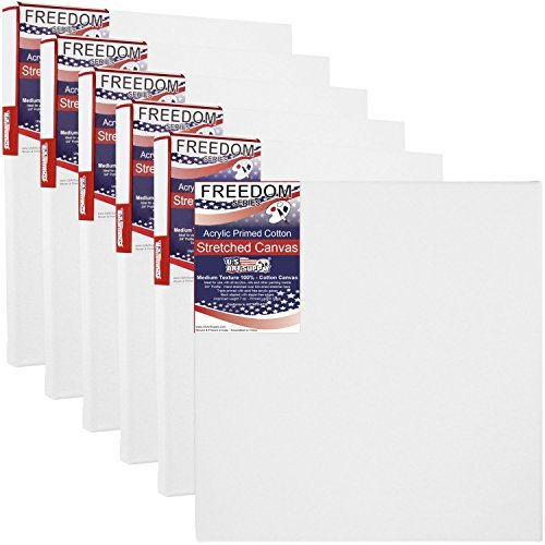 US Art Supply 20 X 20 inch Professional Quality Acid Free Stretched Canvas 6-Pack - 3/4 Profile 12 Ounce Primed Gesso - (1 Full Case of 6 Single Canvases) [並行輸入品]   B07TH1Q82C