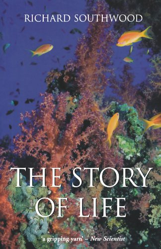The Story of Life by imusti