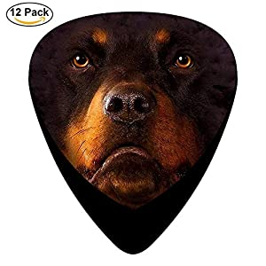 Sherly Yard Rottweiler Big Face Celluloid Guitar Picks 12er Pack für elektrische Akustikgitarre