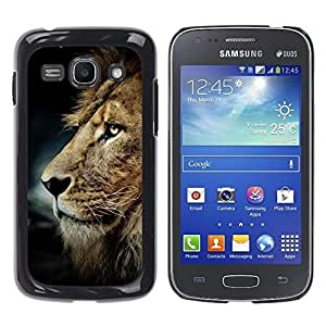 All Phone Most Case / Hard PC Metal piece Shell Slim Cover Protective Case Carcasa Funda Caso de protección para Samsung Galaxy Ace 3 GT-S7270 GT-S7275 GT-S7272 messy hair lion mane golden br