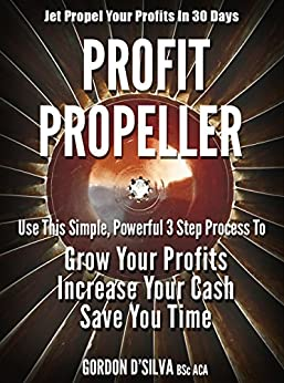 Profit Propeller Propel Your Profits ebook product image