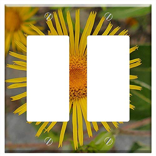 Rocker/GFCI - Alums Flower Close Yellow Blossom Bloom Bright ()