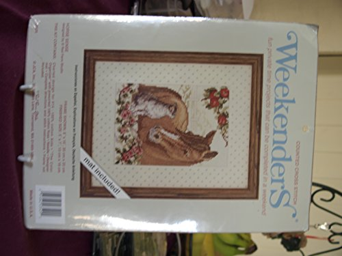 Weekenders Counted Cross Stitch Kit Horse Sense 03529