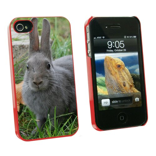 Graphics and More Bunny Rabbit Gray - Easter - Snap On Hard Protective Case for Apple iPhone 4 4S - Red - Carrying Case - Non-Retail Packaging - Red