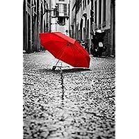 Red Umbrella Cobblestone Street Old Town Wind and Rain B&W Poster 12x18