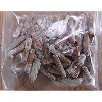 Outil pour culture de champignons shiitake sur bois