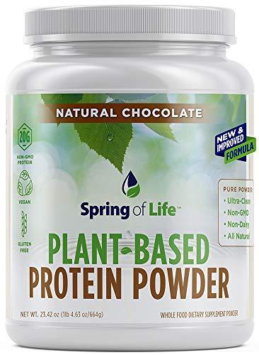 Spring Of Life Plant-Based Protein Powder, Vegan, Non-GMO, Hypoallergenic, Chocolate, 22 Serve ()