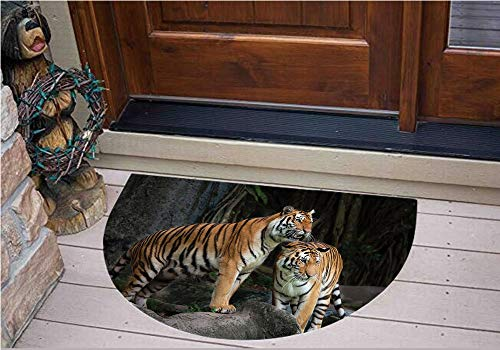 (3D Semicircle Floor Stickers Personalized Floor Wall Sticker Decals,Jungle on Big Rocks Image Wild Cats in Nature,Kitchen Bathroom Tile Sticker Living Room Bedroom Kids Room Decor Art Mural D35.4