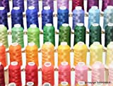 New from ThreadNanny Brother 63 Colors Embroidery Thread Set with Thread Stand / Rack