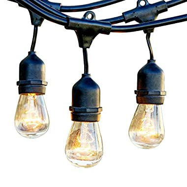 Proxy Lighting Weatherproof String Lights with 15 Dropped Sockets, 48-Feet, Black - With Bulbs