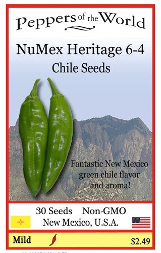 NuMex 6 4 Green Chile Seeds product image