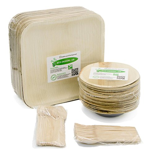 Party Set of 100 Eco-Friendly Dinnerware - 10