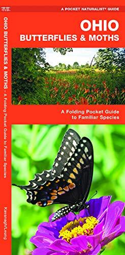 Ohio Butterflies & Moths: A Folding Pocket Guide to Familiar Species (A Pocket Naturalist Guide) -